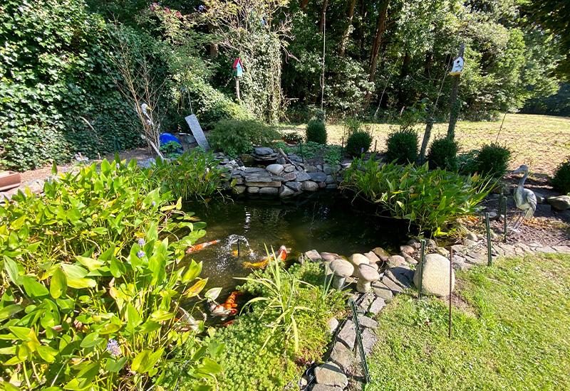 Garten der Ferienwohnung Hude